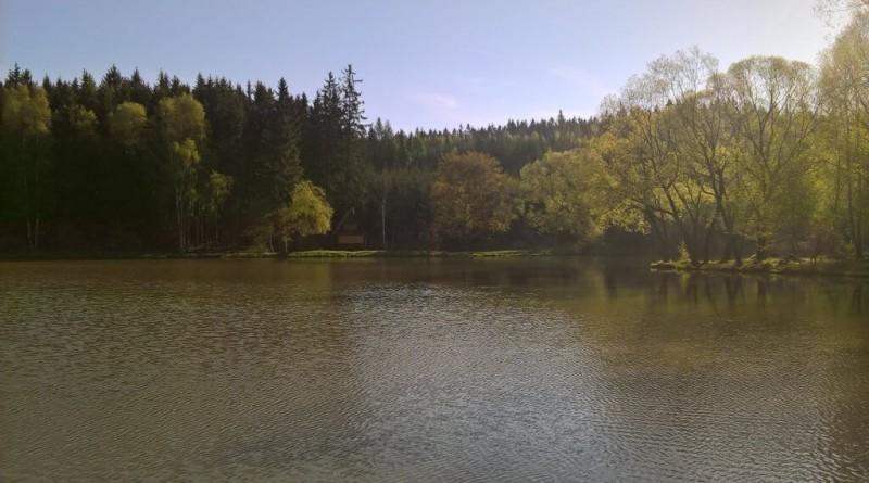 Rybník Nový