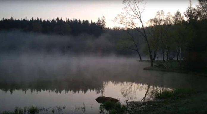 kouzelné ráno u vody