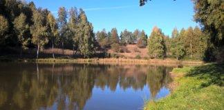 menší rybník