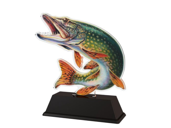 Moderní rybářské ocenění