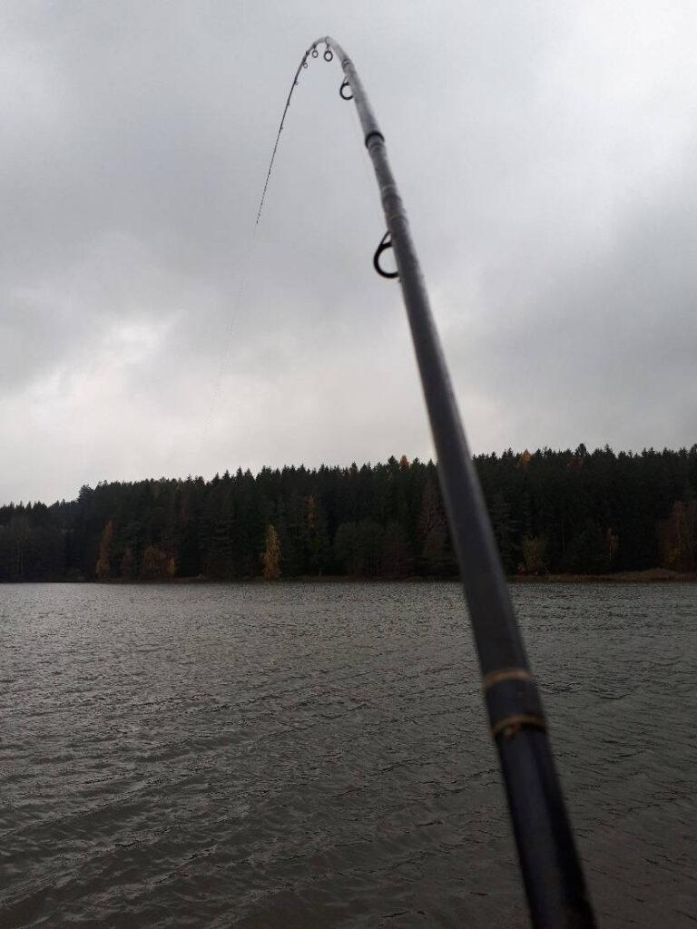 Parabolický prut pro lov s pletenkou